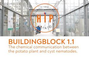 HIP - Buildingblock 1.1 - De chemische communicatie tussen de aardappelplant en cyste-nematoden als basis voor duurzame verbetering van de aardappelopbrengst